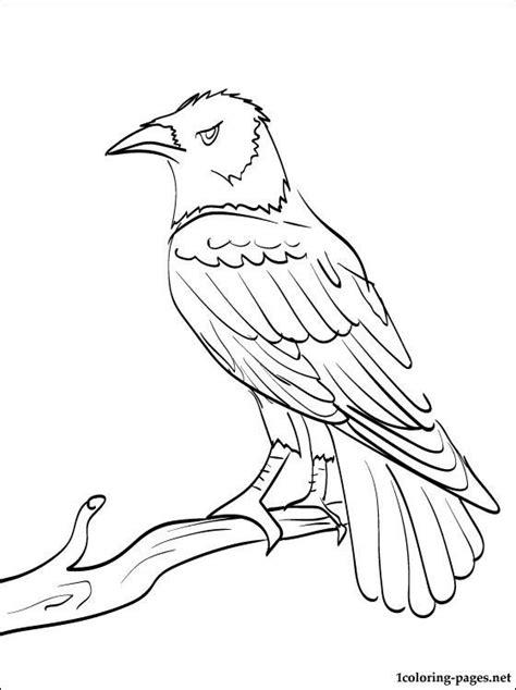 unique raven coloring page super coloring pages