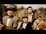 The Beverly Hillbillies (1993)) with Erika Eleniak, Jim ...