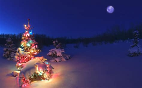 Winter Christmas Tree Wallpapers Hd / Desktop And Mobile