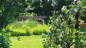 Englischer Garten Pflanzen : englischer garten in den blumeng rten hirschstetten ~ Articles-book.com Haus und Dekorationen