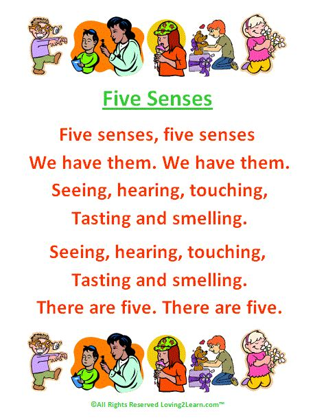 subjects science science the human 5 | Five%20Senses%20Songs