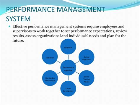 Pia Performance Evaluation System