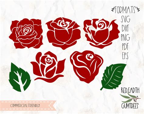 roses flower collection bundle  leaves  svg eps  dxf png formats formats cricut