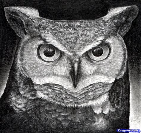 draw  great horned owl step  step birds