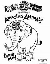Coloring Superwoman Batgirl Circus Down Ringling Clip Brothers Week Library Clipart Popular Around Supergirl Rainpow Cartoon sketch template