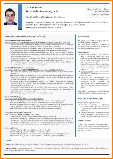 Modele Cv Commercial Word by Modele Cv Directeur Financier Roger Bontemps