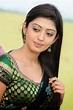 Actress Gallery: Actress pranitha cute stills