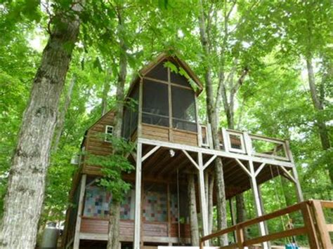 dale hollow lake cabin rentals a treehouse at dale hollow vrbo