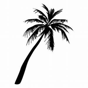 Palm tree illustration - Transparent PNG & SVG vector file