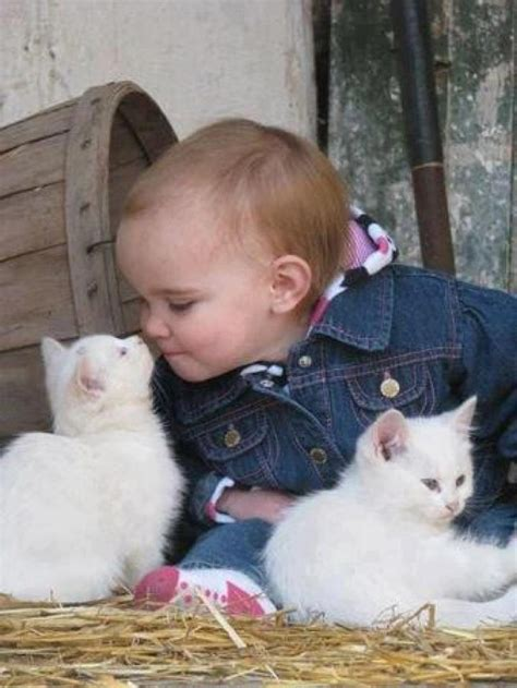 baby playing   kittens annie