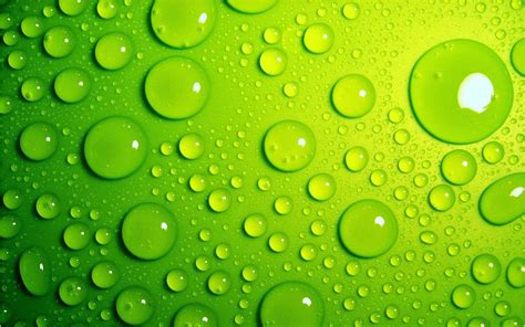 bright, Green, Drops Wallpapers HD / Desktop and Mobile ...