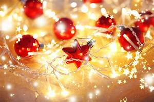 Decorating, With, Christmas, Lights, -, News, -, The, Daily, News