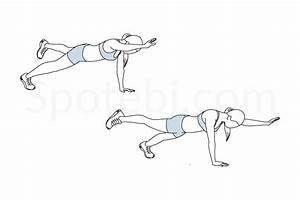 Plank Bird Dog | Illustrated Exercise Guide