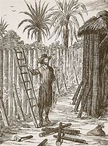 Robinson Crusoe Building His Bower Painting by English School