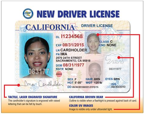 The California Department Of Motor Vehicles