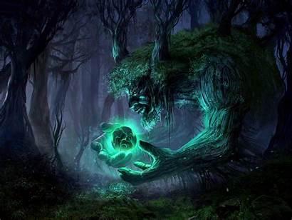 Fantasy Magic Forest Dark Wallpapers Enchanted Desktop