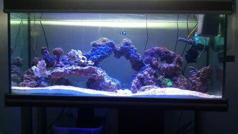 aquarium eau de mer complet pas cher aquarium d eau de mer pas cher 28 images aquarium eau de mer 40l aquarium eau de mer