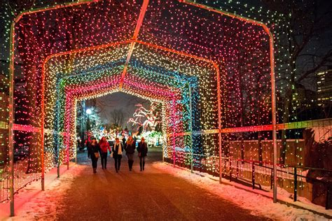 how much does zoo lights cost in phoenix when does zoo lights start mouthtoears com