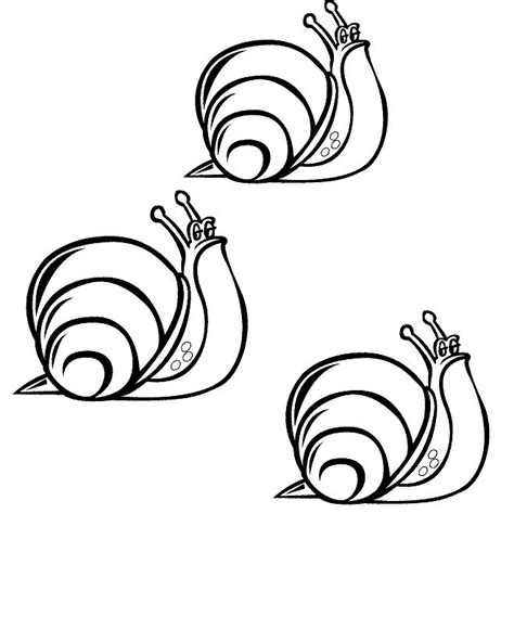 snail coloring page n 20 coloring pages of snails