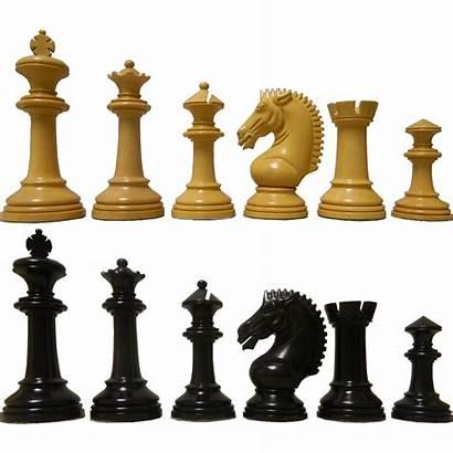 Chess Zeus Antiquities Staunton Ebony Pieces C02