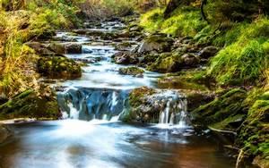 Mountain, Stream, Water, Rocks, Rocks, Green, Moss, Grass, Forest