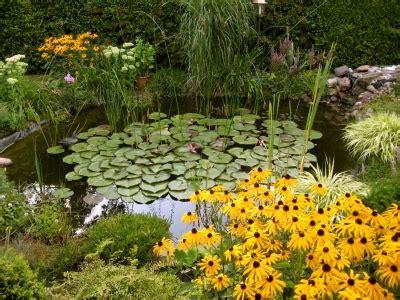 Teich Im Garten  Ein Echter Hingucker