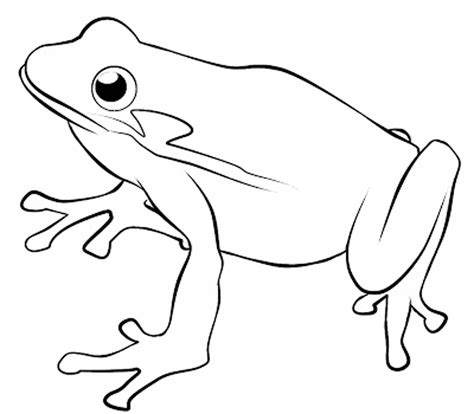 Coloring Frogs by Print Frog Coloring Pages Theme For