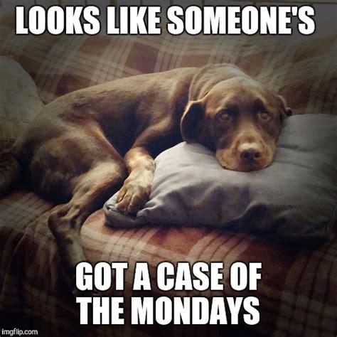 Case Of The Mondays Meme - case of the mondays meme 28 images case of the mondays case of the mondays meme 100 images