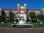 A bear's life in the fast lane: Florida State University
