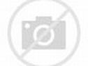1981 Indianapolis 500 - Wikipedia