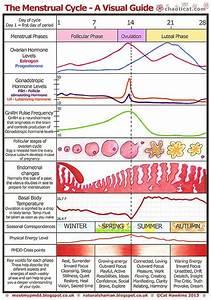 Menstrual Chart A Visual Guide A4 Menstrual Cycle