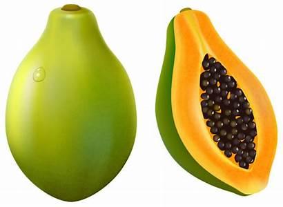 Papaya Clipart Fruit Vector Papayas Pawpaw Transparent
