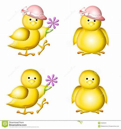 Clipart Objects Easter Chicks Clip Pulcini Yellow