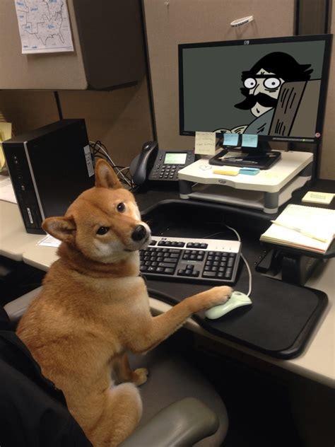 psbattle  dog sitting  front   computer screen paw