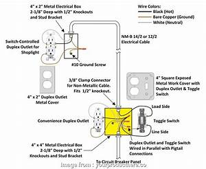 Wire Diagram For Receptacle And Plug Switchbo