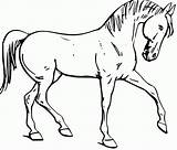 Coloring Horse Printable sketch template