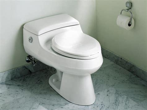 Watersaving Toilets That Won't Flush Away Your Money Hgtv