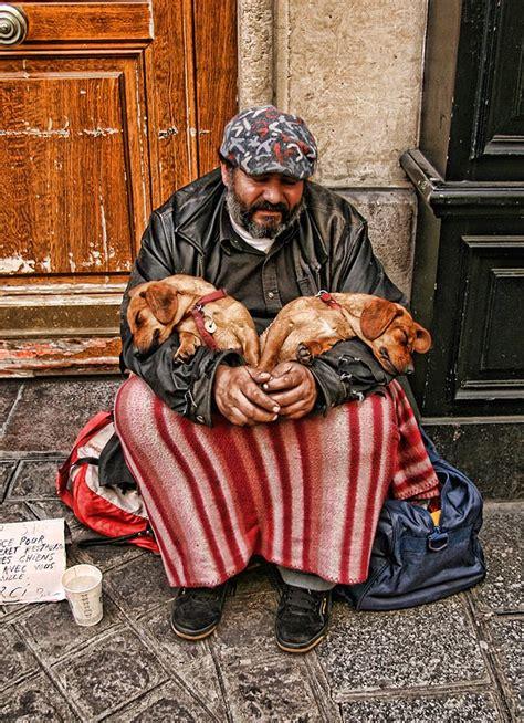 Filehomeless  Ee  Puppies Ee   Paris October  Jpg Wikimedia