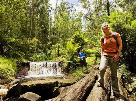 Walking And Hiking, Outdoor Activities, Victoria, Australia