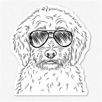 Labradoodle Poodle Labrador Dog Mix Teddy Decal