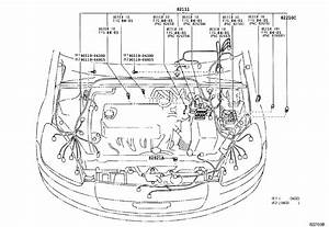 2002 Toyota Echo Wiring Diagram