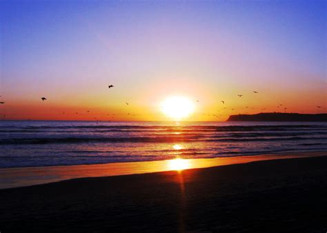 San Diego Sunset Sleeper The Woods Deviantart