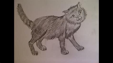 zeichnen lernen fuer anfaenger katze malen ein