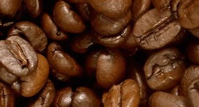 Beans Coffee Mccafe Things Must Know Arabica