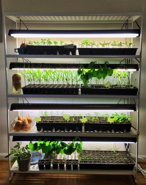 seed starter grow lights starting seeds indoors has never been easier since i built