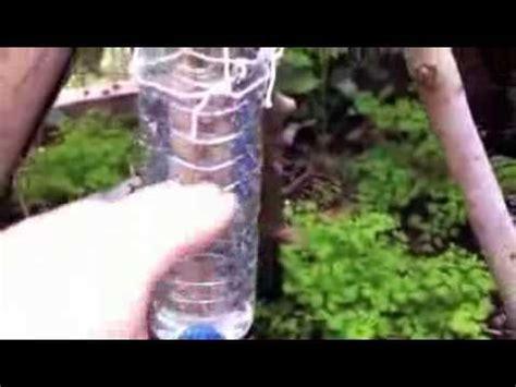filtre aquarium eau de mer survie fabrication d un filtre 224 eau bushcraft avec du charbon