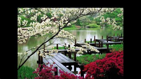 jardines japoneses hd  arte  jardineria diseno de