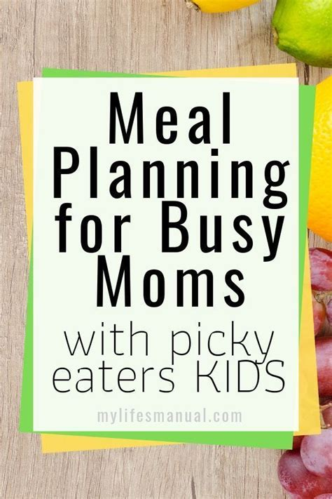 You also can try to find lots of similar ideas here!. Meal Planning Binder and Beginners Guide for Busy Moms ...