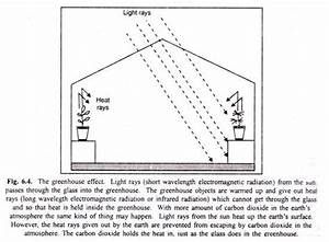 Essay On Greenhouse Effect  With Diagram