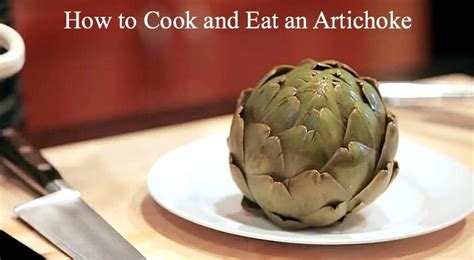 how to cook an artichoke how to cook and eat an artichoke deliciously organic